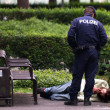 Vienna policeman inspecting a man laying on the ground — Stock Photo