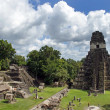Temple of Great Jaguar in Tikal — Stock Photo #13894460