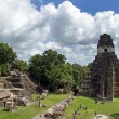 Temple of the Great Jaguar in Tikal — Stockfoto
