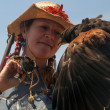 Harris Hawk and the handler — Stock Photo