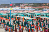 Opulent Tuscany beach with luxurious equipment on June 26, 2014  — Stock Photo
