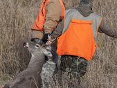 Deer Hunters — Stock Photo