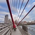 Bridge ropes — Stock Photo