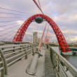 Zhivopisniy bridge — Stock Photo #15534071