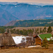 Stock Photo: Houses in Zlatibor mountains