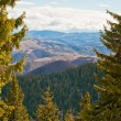Stock Photo: View from Kopaonik slopes