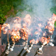 Stock Photo: Chicken shashlyk on barbecue clouse up