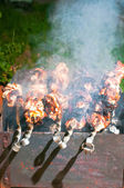 Chicken shashlyk on a barbecue clouse up — Stock Photo