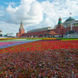 Flower carpet on Red Square — Stock Photo