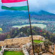 Hungarian flag — Stock Photo