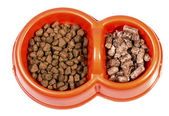 Cat food — Stock Photo