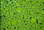 Green geometric pattern — Stock Photo