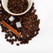 Coffee beans in brown cup with canella — Stock Photo #33113437