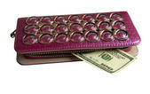 Purse with money — Stockfoto