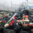 Stock Photo: Flowers in memory of murdered on Euromaidan. Ukrainiprotests 2014