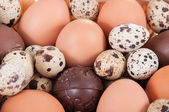Huevos de gallina, codornices y chocolate — Foto de Stock