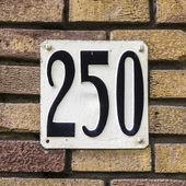 Nr. 250 — Foto Stock