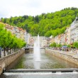 SpKarlovy Vary , Teplriver — Stock Photo #26956285