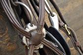 Horse bridle — Stock Photo