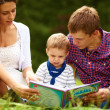 Mom, dad and little boy reading a book on the meadow - Stock Photo