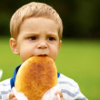 Portrait of a young boy takes a bite long loaf or stick - Stock Photo