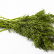 Bunch of fennel - 图库照片
