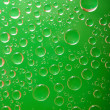 Water-drops on green - Photo