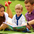 Mom, dad and little boy reading a book on the meadow - ストック写真