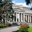 The Pushkin Museum of Fine Arts in Moscow, Russia - Stock Photo