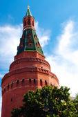 Rohové arzenál věž (sobakina) - nejsilnější věž moskevského kremlu, rusko — Stock fotografie