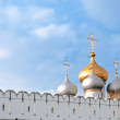 Stock Photo: Cupolas and wall
