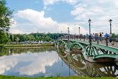 Gothic bridge throw lake — Stock Photo