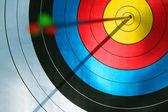 Bull's eye (archery) — Stock Photo