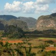 Royalty-Free Stock Photo: Vinales valley, Cuba