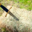 Medieval sword stuck in a pile of hay — Stock Photo