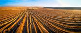 Wheel tracks and steps in desert — Stock Photo