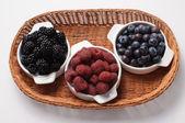 Berries of the Season — Stock Photo