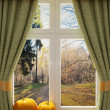 Stock Photo: Window with pumpkins a beautiful view