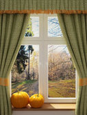 Window with pumpkins a beautiful view — Stock Photo