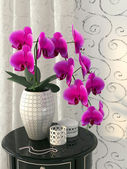 Pink orchid on the nightstand — Stock Photo