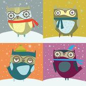 Cute winter owls card — Vector de stock