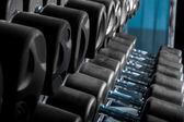 Set of dumbbells in gym — Stock Photo