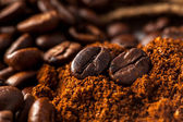 Close up picture of coffee beans — Stock Photo