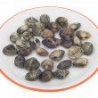 Stock Photo: Clams in dish