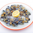Stock Photo: Clams ready to eat