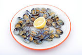 Clams ready to eat — Stock Photo