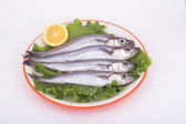 Blue Whiting ( fish ) — Stock Photo