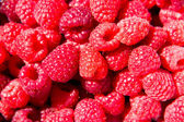Red Raspberry fruit — Stock Photo