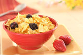 Corn flakes with berries — Stock fotografie