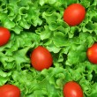 Closeup of a salad — Stock Photo